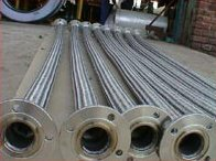 Stainless Steel Flexible Hose 7